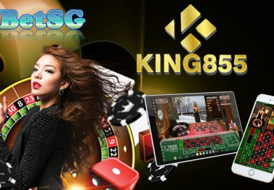 king855 Gambling Establishment – Your Good Fortune Has Actually Been Unparallel